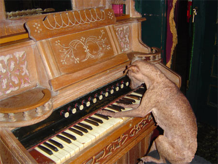 The Phantom of the Canine Opera